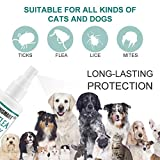 IMG-1 segminismart spray pulci antipulci cane