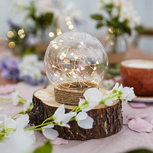 Preisvergleich Produktbild batteriebetriebene Deko Glas Kuppel mit Mikro LEDs in warmweiß,  auf kupferfarbenen Draht angebracht,  von Festive Lights