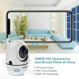 Zoom IMG-1 cacagoo 1080p telecamera wifi interno