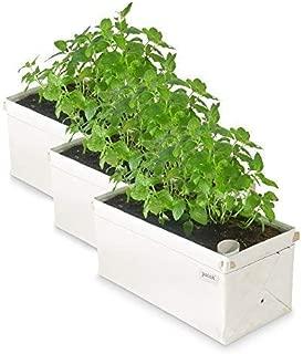 Best garden patch planters Reviews