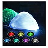 LED Light up Face Mask 7 Color Lights USB Rechargeable Glowing Luminous Mask(Black)