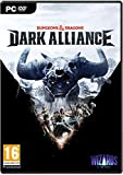 Dungeons & Dragons: Dark Alliance (con Steelbook)