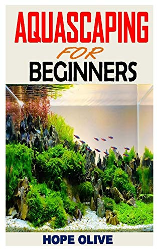 AQUASCAPING FOR BEGINNERS: Discover everything you need to know about aquascaping