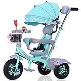 NBgycheche Triciclo Trike Triciclo para niños, triciclos de niños 4 en 1 Bicicleta 1-3-6 años de Edad Trolley niño Bicicleta toldo Reversible Plegable Pedal multifunción (Color : Green)