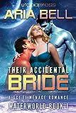 Their Accidental Bride (Waterworld Book 1)