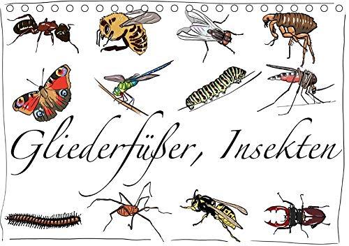 Gliederfüßer und Insekten (Tischkalender 2020 DIN A5 quer): Tierzeichnungen (Monatskalender, 14 Seiten ) (CALVENDO Tiere)
