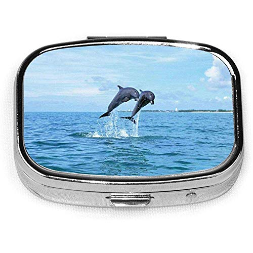 Jump Dolphins Case Portable Mini Container Organizer with 2 Compartments Square Pill Box