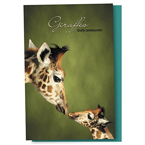 Tree-Free Greetings EcoNotes 12 Count Parent and Child Giraffe All Occasion Notecard Set with Envelopes, 4 x 6 Inches (FS66812)