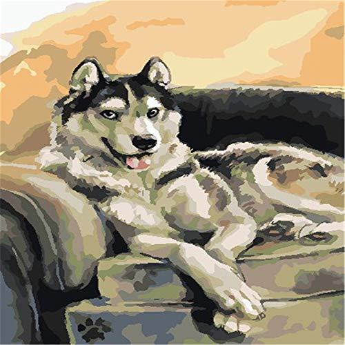 Kits de pintura por números 40 cm x 50 cm lienzo DIY pintura acrílica para adultos y niños con pinturas, lobo en el sofá
