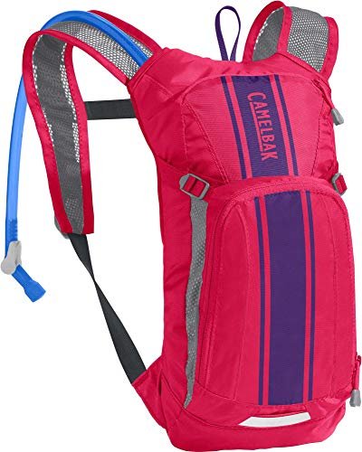 CamelBak Mini M.U.L.E. Kids Hydration Backpack Review