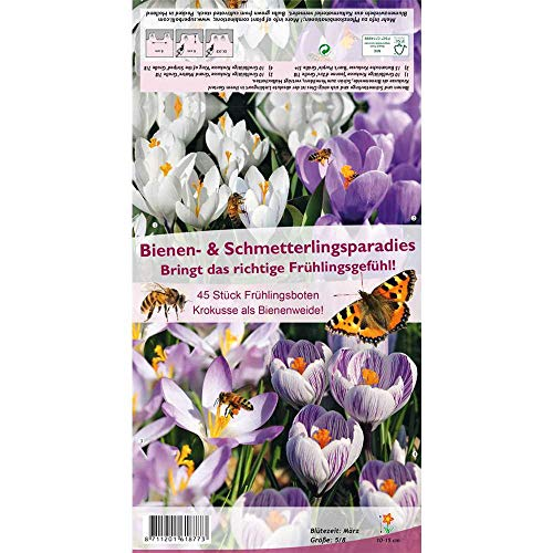 Florado 45x Krokusse als Bienenweide Blumenzwiebeln, Zwiebelblumen, Garten, Blumen Schnittblumen, Bienen Insekten Hummeln, Größe 5/8