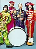 By 24 SEVEN Red Hot Chili Peppers Funk Rock Band Anthony Kiedis Flea Chad Smith, Josh Klinghoffer, John Frusciante Poster12x12 inch poster