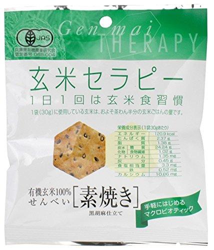 アリモト 有機玄米セラピー・素焼き 30g×20袋
