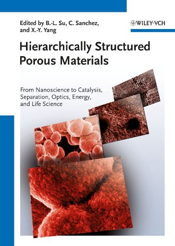 Hierarchically Structured Porous Materials: From Nanoscience to Catalysis, Separation, Optics, Energy, and Life Science (English Edition)