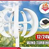 SISHUINIANHUA 6000W AC 12V 24V Wind Turbines Generator Lantern 5 Blades Motor Kit Vertical Axis for Home Hybrids Streetlight Electromagnetic,6000w,24v