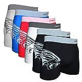 Crazy Cool Seamless Fun Boxer Briefs BoyShorts for Women and Men Underwear 6-Pack (Medium/Large, Lion-6Pack)