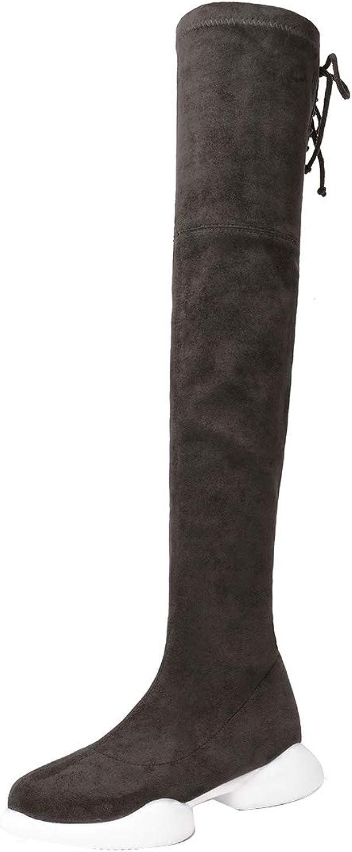 Jushee Womens Supuper 3 cm Low-Heel Over-The-Knee Zipper Suede Boots