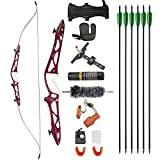 ZSHJGJR Archery 66' 68' 70' Takedown Recurve Bow and Arrow Set 14-40lbs Hunting Target Practice Bow Kit Aluminum Alloy Riser Traditional Longbow for Adult Youth Beginner (Red, 66' 26lbs)