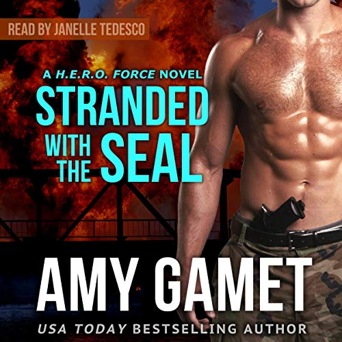 Stranded with the SEAL audiobook cover art
