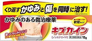 【第2類医薬品】キズカイン 15g