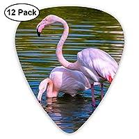 鳥水フラミンゴ2ピンク色のエレクトリックギターのための絶妙な12ピースピック、エレクトリックギターとアコースティックギターに適しています