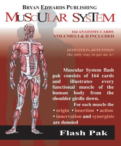 The Muscular System (Flash Paks/Volumes 1 and 2)