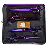 Best Grooming Shears For Dogs - LILYS PET Professional PET DOG Grooming Coated Titanium Review