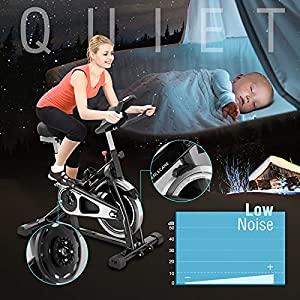 PERLECARE Indoor Cycling Bike, Sturdy Exercise Bike Stationary with 35 LBS Flywheel for Home Cardio Gym, Quiet Belt Drive Spin Bike with Adjustable Handlebar/Seat, LCD Monitor