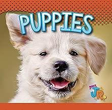 Puppies (Baby Animals)