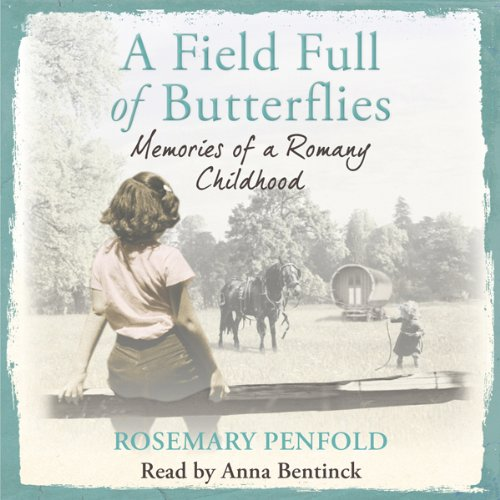 A Field Full of Butterflies cover art