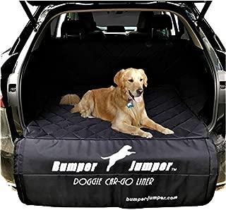 Bumper Jumper
