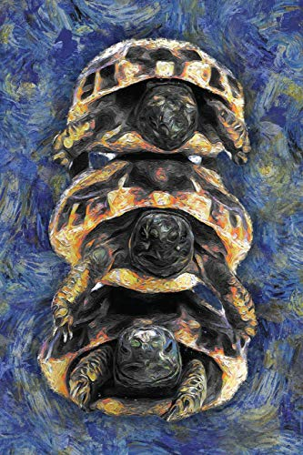 Turtle: Notebook Blank College-Ruled Lined in Van Gogh Starry Night Art Style (Student Animal Journals for Writing Journaling & Note-taking)