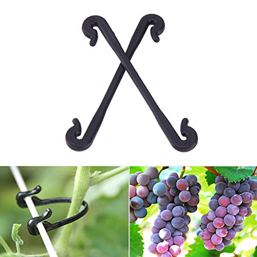 Bureze Outil de jardin 100 pcs Plastique raisins Clips Légumes Fleur Plante Greffe Pince à greffer Vines Clipper