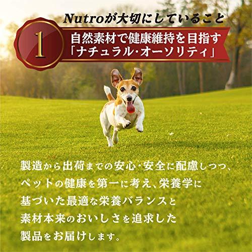 ニュートロジャパンシュプレモ小型犬用成犬用小粒3kg