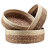 Camisin Juego de 3 bandejas de mimbre de ratán para organizar cesta de frutas de mimbre, cesta de pan, cesta de almacenamiento de alimentos