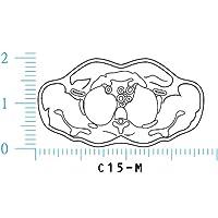 人体図ゴム印 CTスキャン図 胴 M C15