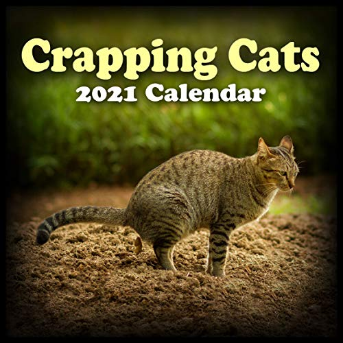 2021 CALENDAR CRAPPING CATS WALL CALENDAR - Pooping Cat Calendar! Gift for Cat Lover, Animal Lover, Crazy Cat Lady. Stocking Stuffer or Gift Exchange. SMALLER THAN STANDARD SIZE. 8' X 16' When Open