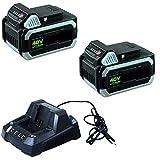 IKRA 17180929-AZ5 Kombipack 2 Batterien &...