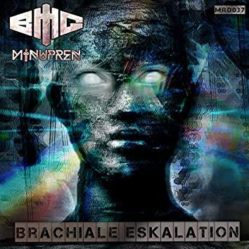 Brachiale Eskalation