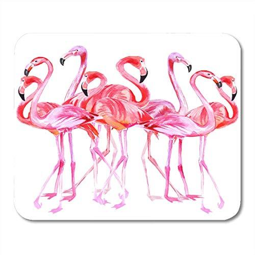 Muismat snabel roze Afrika flamingo tropische vogel licht patroon aquarel strand mooie muismat