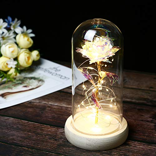 TINYOUTH 24K Rainbow Rose in Glass Dome, Beauty and The Beast Rose with 20LED 2M String Light, 3PCS AAA Batteries Included for Christmas Thanksgiving Wedding Anniversary Mother's Day Valentine's Day