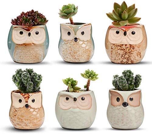 Voarge Vasi in Ceramica (6pz), in Ceramica con Gufo, Vaso per Fiori in Ceramica, per Piante Cactus Vaso per Fiori Vaso per Fiori Fioriera Contenitore Bonsai Vasi con Un Buco Perfetto Idea Regalo