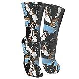 antfeagor Bernese Mountain Dog 33 Compression Socks for Women and Men - Best Medical, Nursing, Travel & Flight Socks