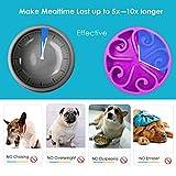 Zoom IMG-1 zellar ciotola per cani alimentazione
