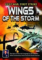 Gulf War: First Strike Wings of the Storm [DVD]