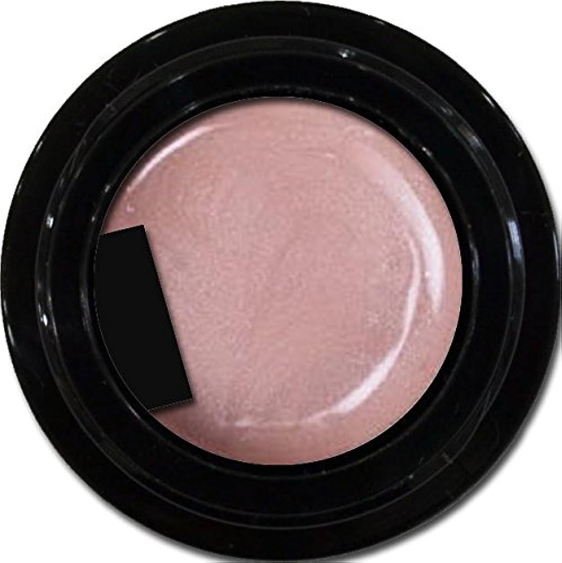 どうしたの三十フクロウカラージェル enchant color gel P304 PlumPink 3g/ パールカラージェル P304プラムピンク 3グラム