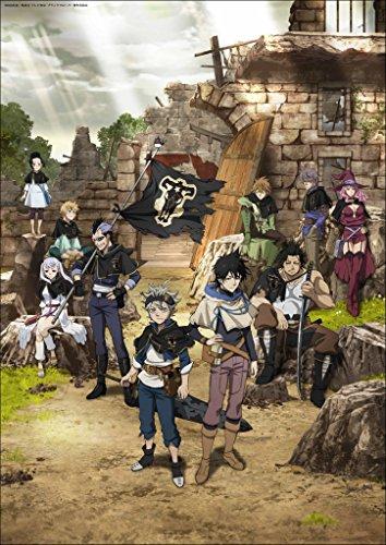 Skinhub 12' x 17' Black Clover ブラッククローバー Anime Poster