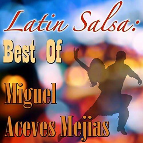Miguel Aceves Mejias