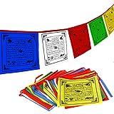 Anley Tibet Buddhist Prayer Flagge - Traditionelle Fünf Elemente - Horizontales Windpferd Design (10' x 10') - 25 Flaggen & 23 Fuß