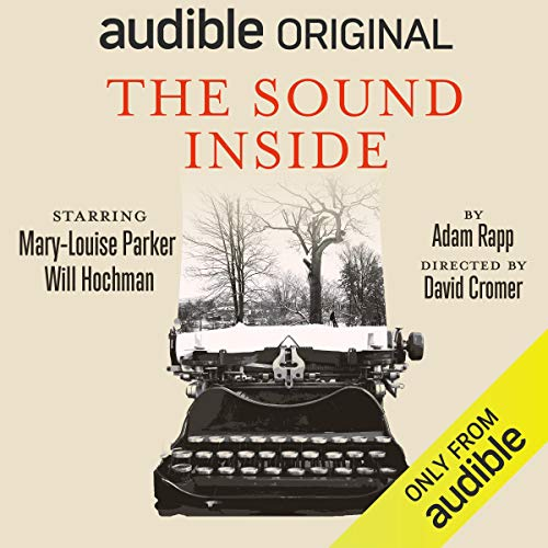 The Sound Inside Audiobook By Adam Rapp cover art